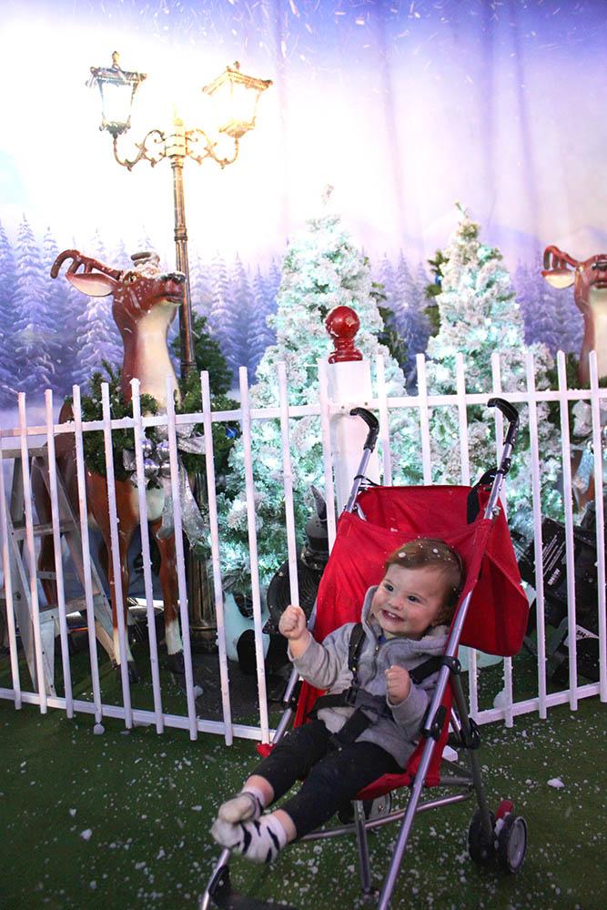 Santas's Magical Kingdom www.cherryandme.com