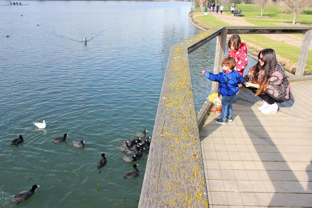 Albert Park Lake www.cherryandme.com