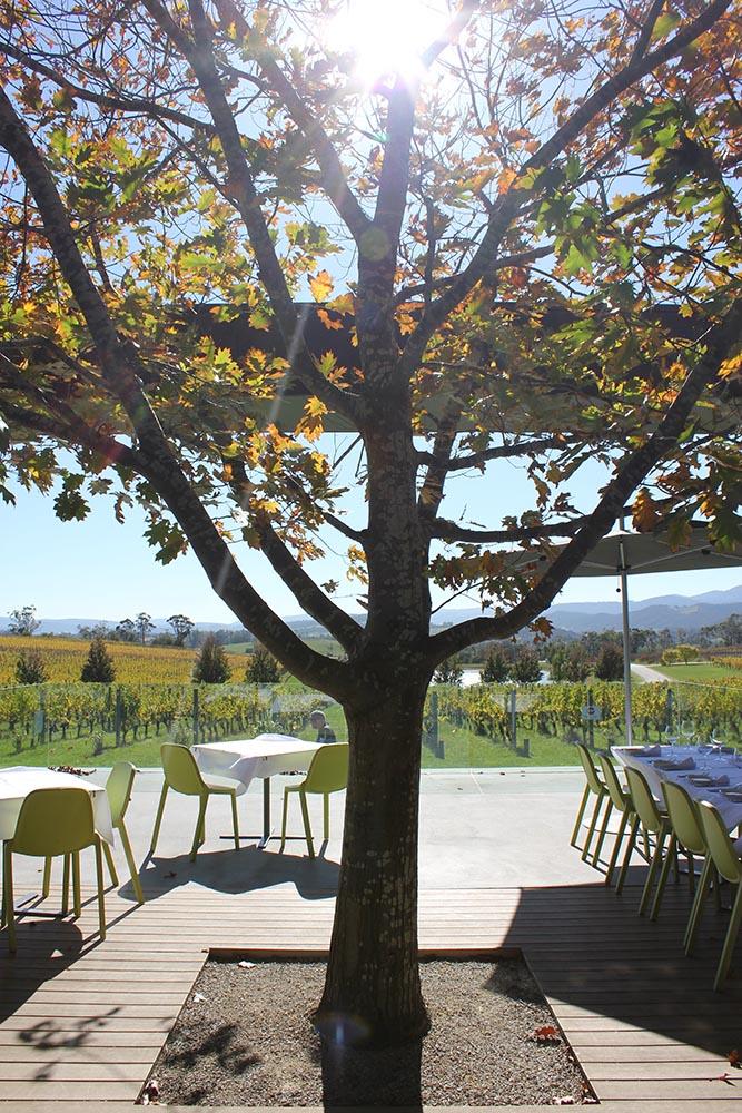 Holdenmums Oakridge Yarra Valley cherryandme.com